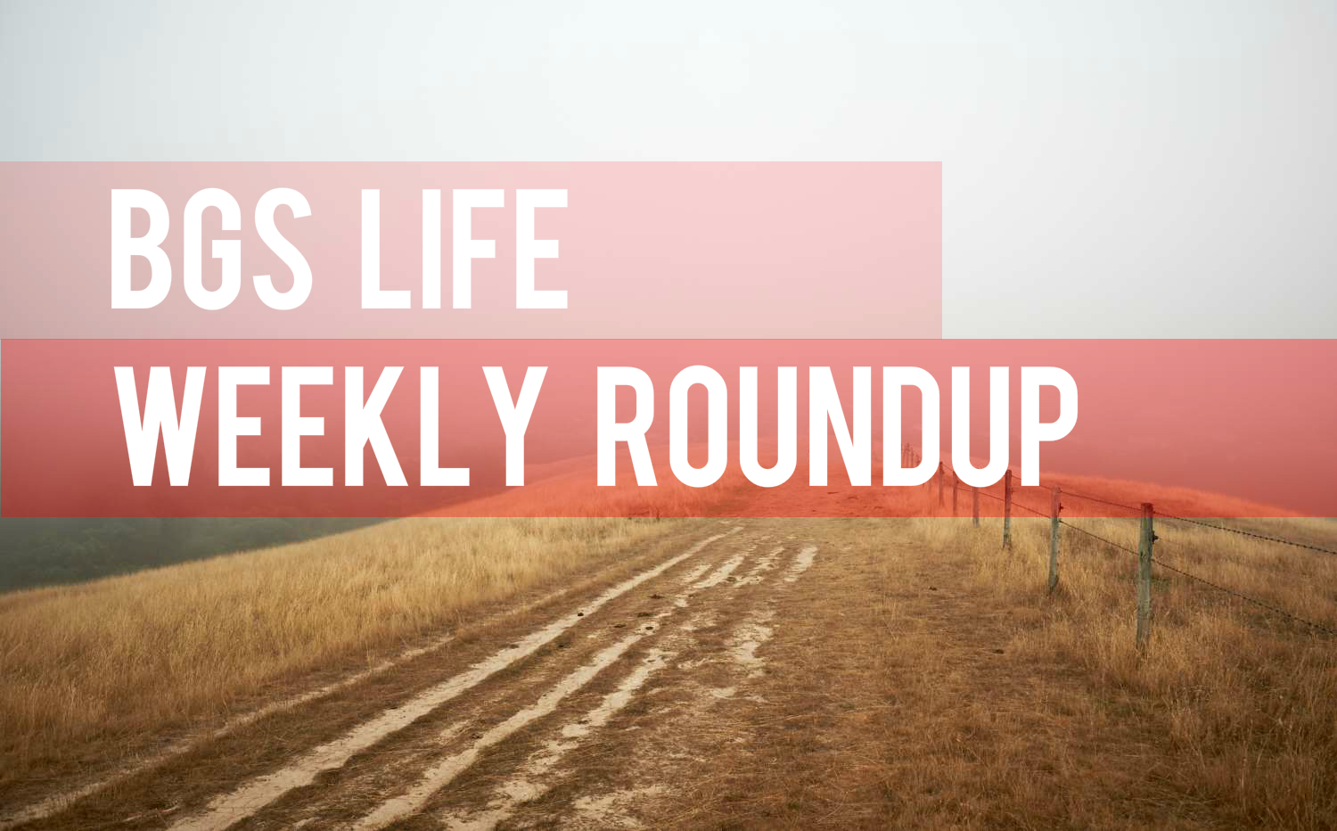 The BGS Life Weekly Roundup: Thanksgiving Feasts, Custom Holiday Gifts, Icelandic Rescuers and More