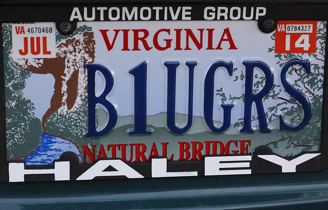 Bluegrass Haikus