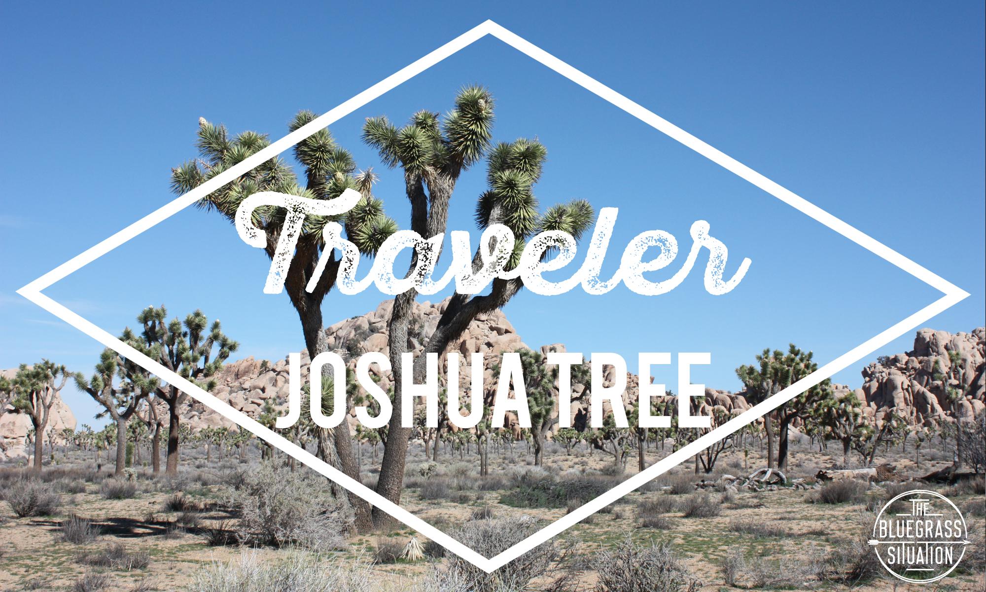 Traveler: Your Guide to Joshua Tree