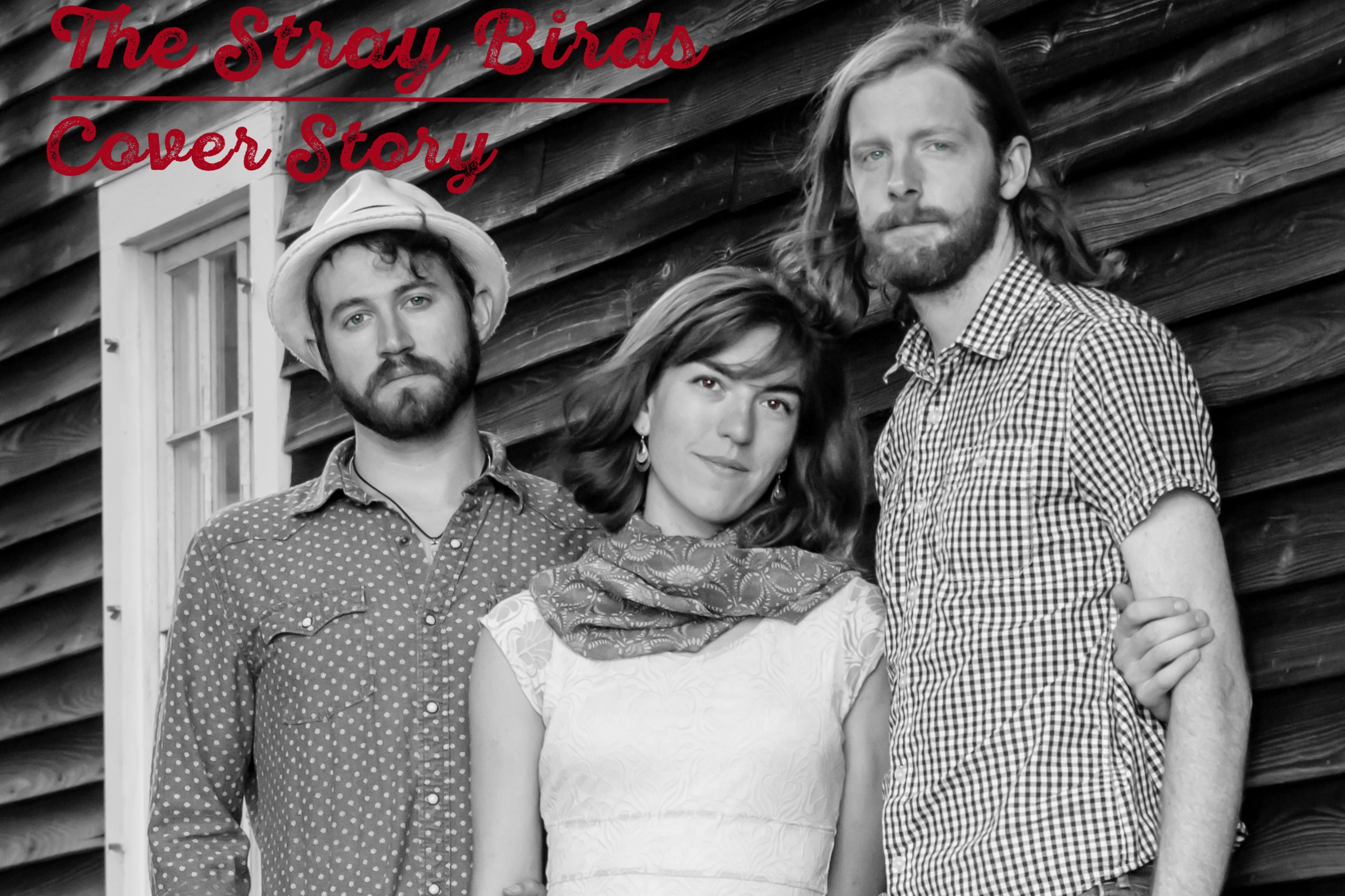 Painting Sounds, Building Bridges, Eating Nachos: A Conversation with the Stray Birds