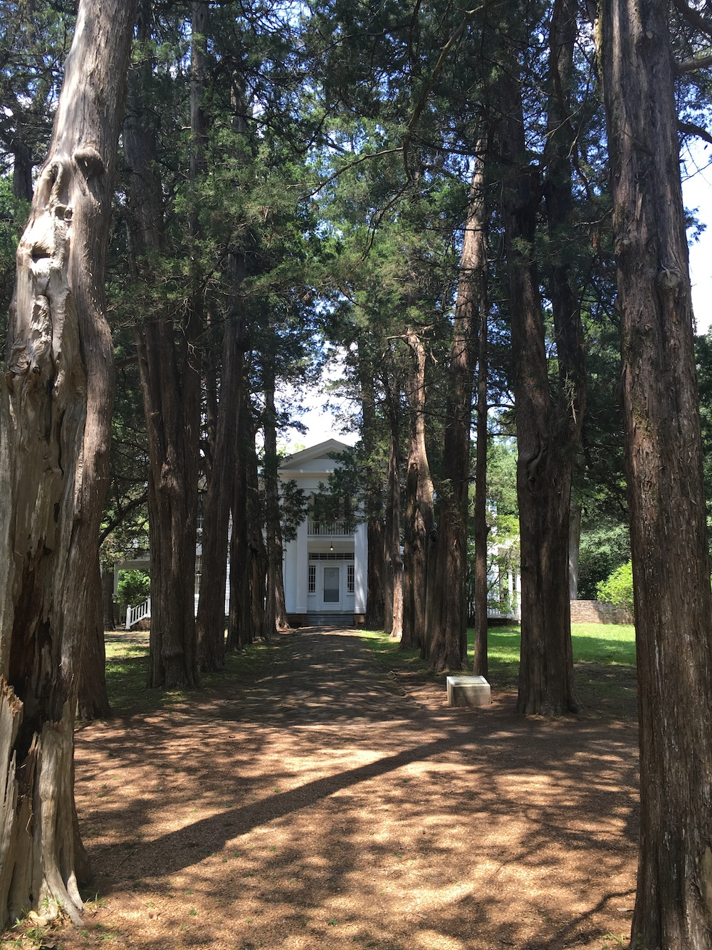 A Few of Our Favorite Things from William Faulkner's Rowan Oak